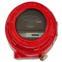 Flameproof Dual IR Flame Detector